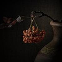 Portrait of a photographer (avatar) Gennadiy Shin
